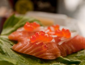 Salmon royal sashimi